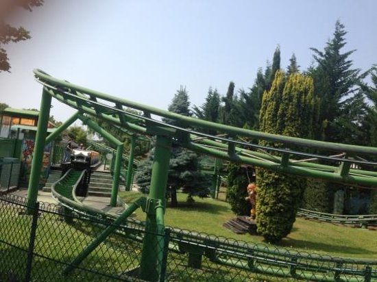 Petit train picture of jardin d 39 acclimatation paris for Au jardin d acclimatation