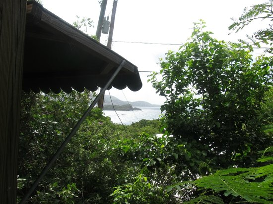 Virgin Islands Campground: View from our cottage