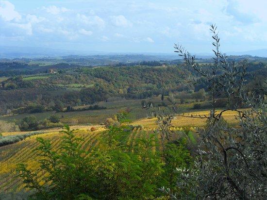 Agriturismo Cesani : Panorama autunnale