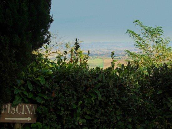 Agriturismo Cesani: Piscina con vista