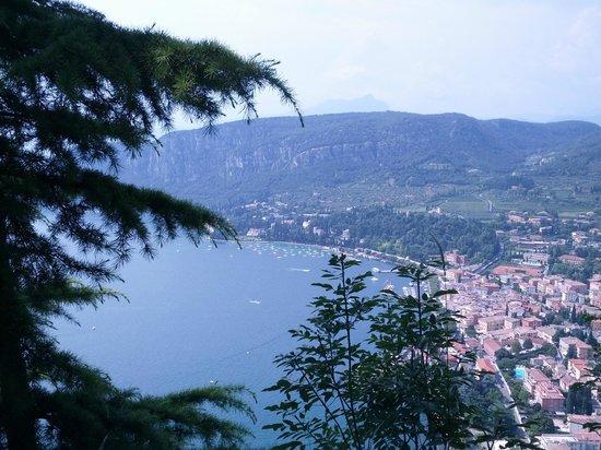 Appartamenti Arca & Ca' Mure: Blick vom Rocca auf Garda