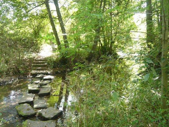 Office de Tourisme du Bocage Bressuirais: la coulée verte environ 7 km