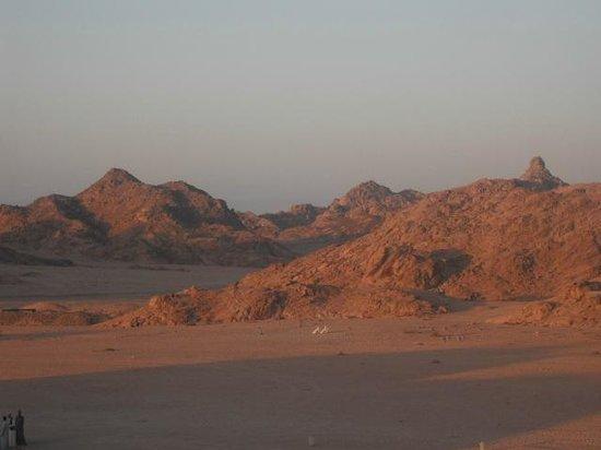 Jaz Mirabel Beach: Sinai by starlight