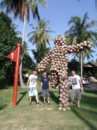 Samui Football Golf Club: coconaldo!