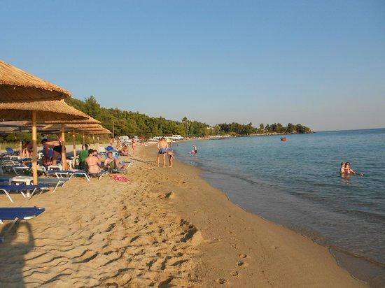Mango Beach Bar: Kalogria beach