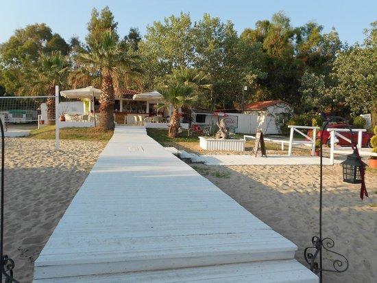 Mango beach bar - Kalogria beach