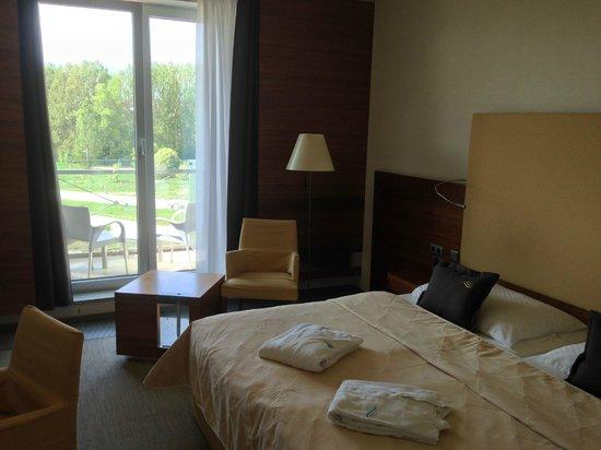 Hotel AquaCity Mountain View: Room & Balcony