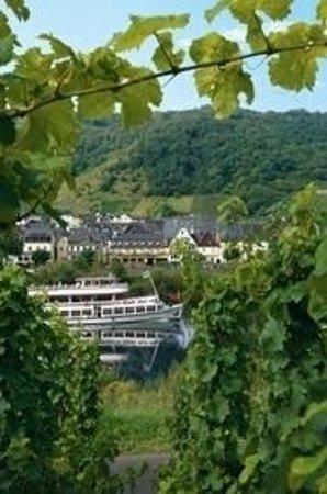 Hotel Hutter: Blick von der gegenüberliegenden Moselseite richtung Hotel