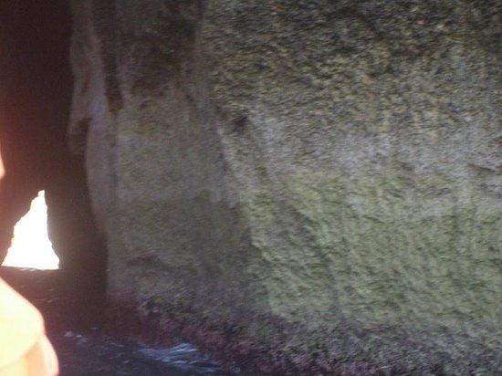 Cliffs of San Lawrenz and Dwejra: Running the Gauntlet
