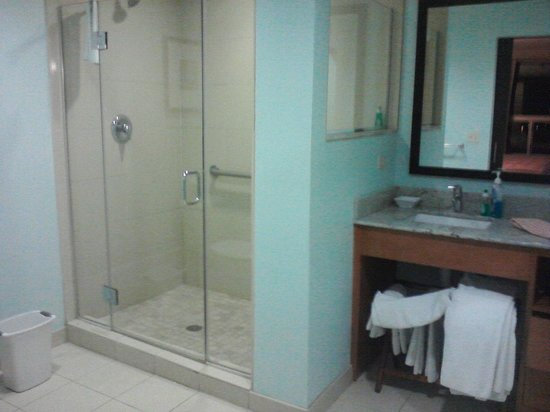 HYATT house Chicago/Naperville/Warrenville: shower