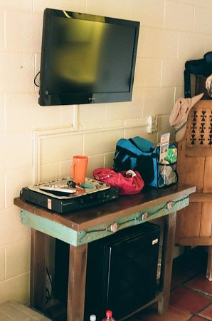 Silver Saddle Motel: The Willie Nelson Room, TV and fridge area