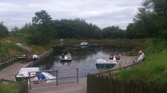 Mabie Farm Park: The boating pond