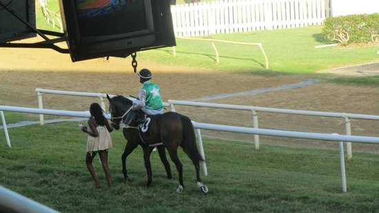 Garrison Savannah - Barbados Turf Club: Winning rider