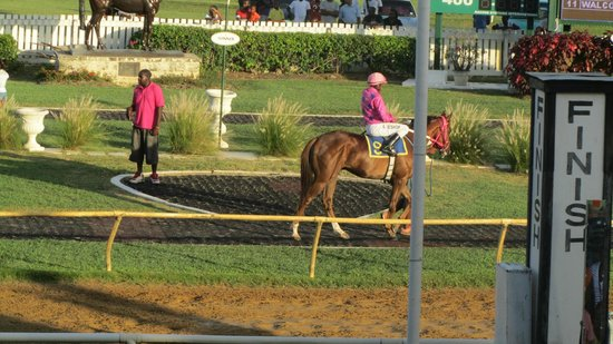 Garrison Savannah - Barbados Turf Club: One of the riders