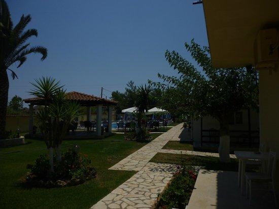 Eleana Studios & Apartments: Gardens