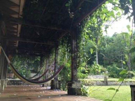 La Villa de Soledad B&B: Garden