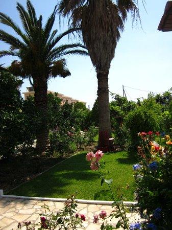 Villa Angela: garden