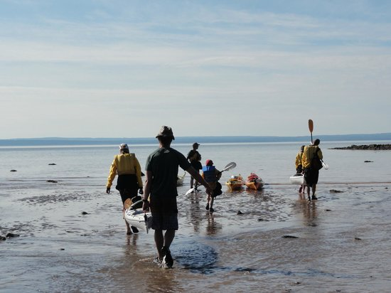 FreshAir Adventure Day Tours: The beach from where we departed was completely underwater upon our return