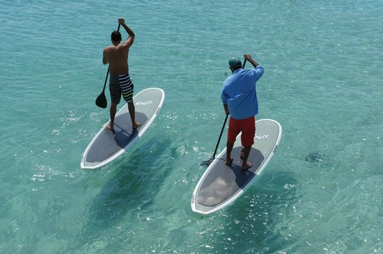 Paddle Board Jamaica: Wait for us!