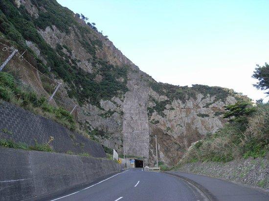 Dokuhama Cliff: 徳浜の断崖