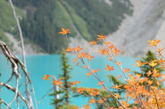 Joffre Lakes Provincial Park : Third Lake - view from the trail in Fall