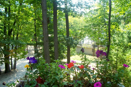 Windjammer On The Lake: #9 view overlooking resort
