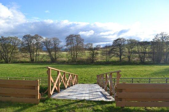 Springburn Lodge: Beautiful Grounds