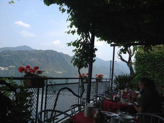 Hotel Leon d'Oro d'Orta : Frokostålassen under ett gigantisk druetre