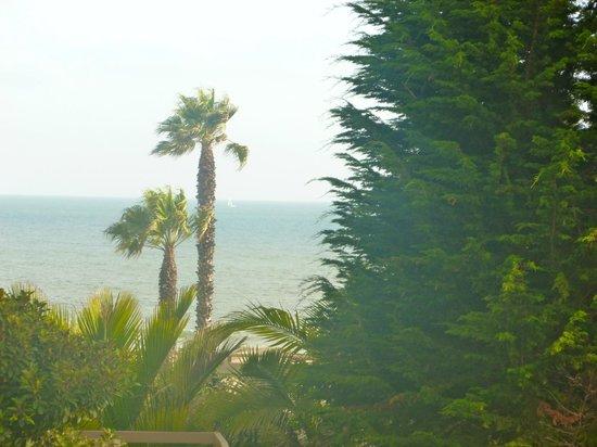 Wyndham Garden Ventura Pierpont Inn: The view from our balcony.