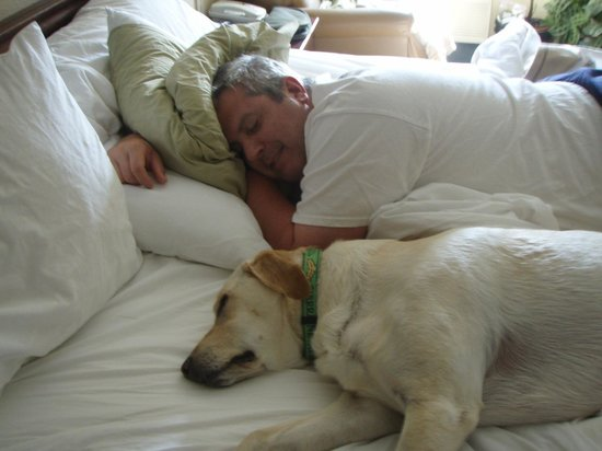 Extended Stay America - Boise - Airport: Sleeping Well!