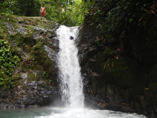 Uvita, Costa Rica: Marvin takes the plunge