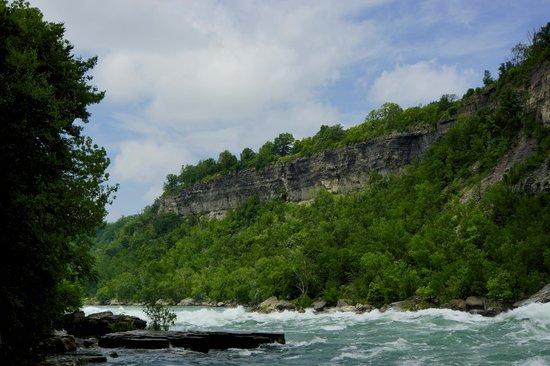 Always Inn Bed & Breakfast : Niagara River