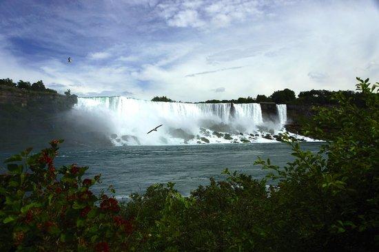 Always Inn Bed & Breakfast : Niagara Falls