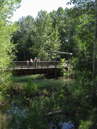 Morrison-Knudsen Nature Center : Bridge for viewing pond and fish