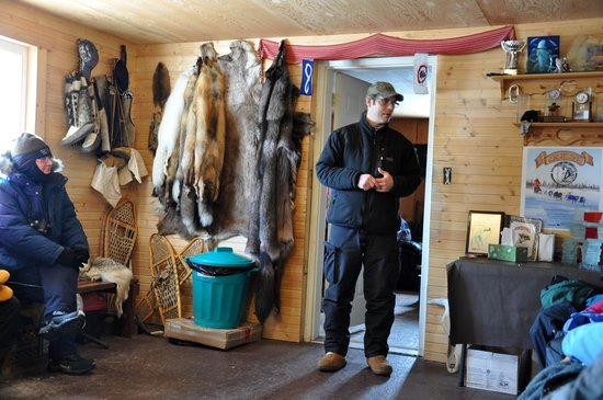 Tundra Inn : Dave Dailey, dogsledder
