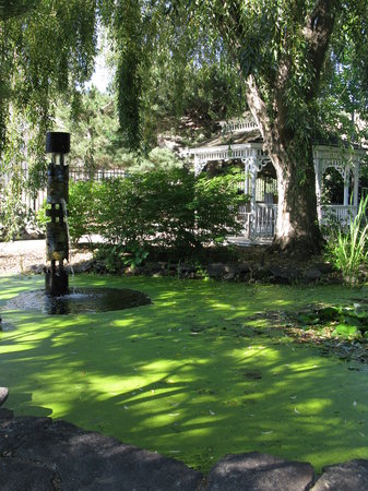 Idaho Botanical Garden: Meditation pool and gazebo