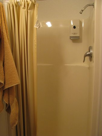 Denali RV Park & Motel: Shower in good shape