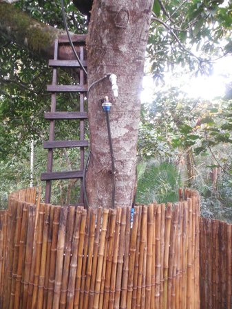 Chimps' Nest: Shower on the Tree House