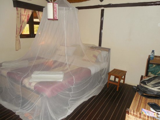 Chimps' Nest: Bug Net is a Necessity in this Nature Lodge
