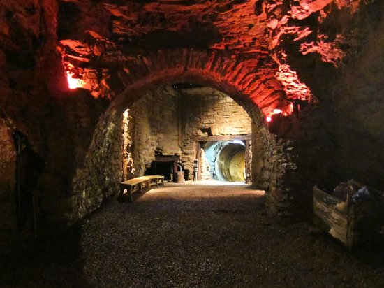 Lockport Cave and Underground Boat Ride: Part of the cave tour