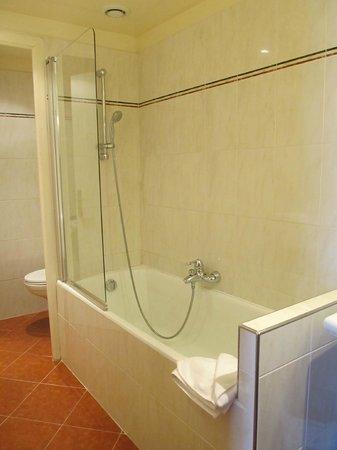 Hotel Saint Petersbourg : the bathtub