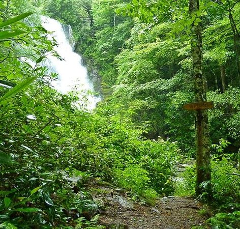 Miller's Land of Waterfall Tours: waterfall trail