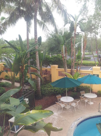 La Quinta Inn & Suites Ft. Lauderdale Plantation : The view I had of the courtyard and pool & spa