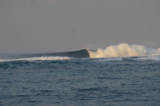 Fiji Hideaway Resort & Spa : cool surfing spot as well