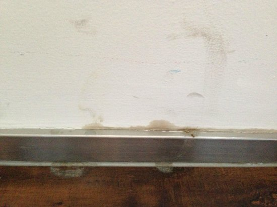 FX Hotel Beijing Chaoyang Garden: mold on the wall