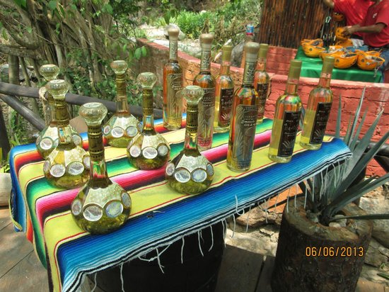 Indio Adventures: Tequila Tasting after the Zip Line Tour