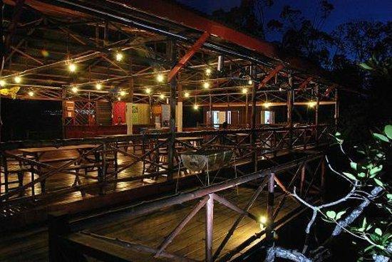 Semporna Proboscis River Cruise: Borneo Semporna Probosics Monkey