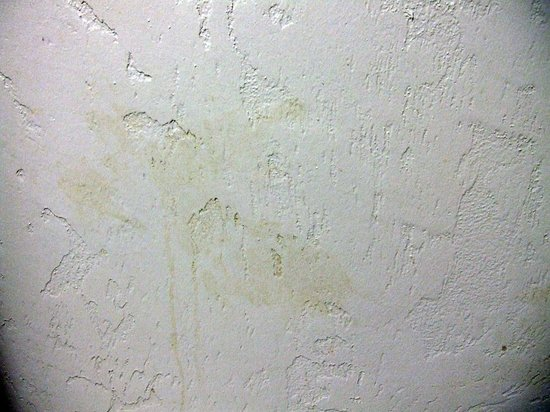 La Quinta Inn & Suites Anchorage Airport: Another disgusting yellow stain on bathroom wall