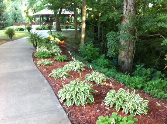 The Elms Hotel and Spa: Walking paths
