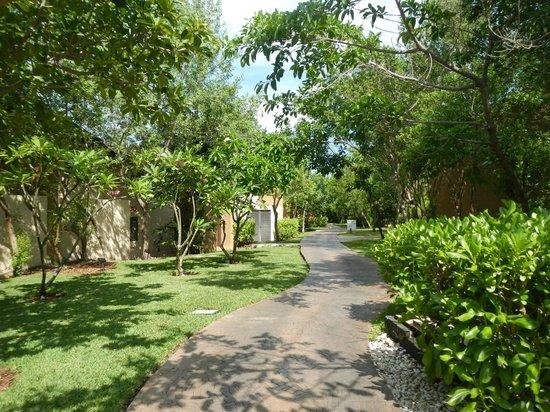 Banyan Tree Mayakoba: Resort Walkway